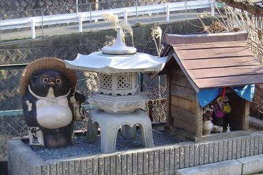shrine-with-tanuki